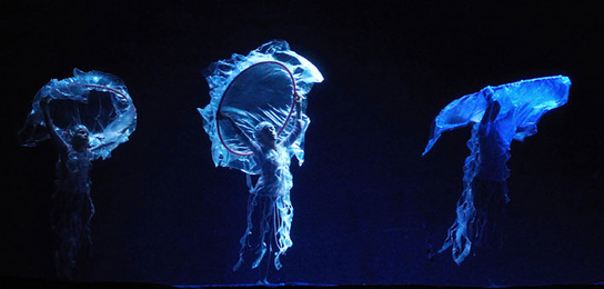 Three jellyfish from the ballet
